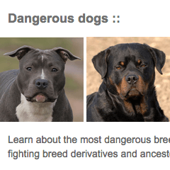 Dangerous Dogs Page